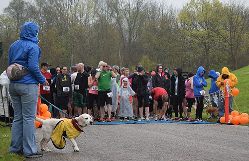 5K-9 Race & Shelter Campaign - OSCAR Animal Rescue in Sparta, NJ